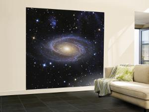 Messier 81, or Bode's Galaxy, is a Spiral Galaxy Located in the Constellation Ursa Major