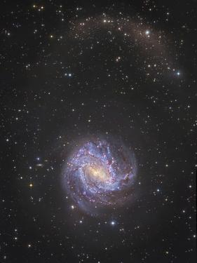 Messier 83 and its Northern Stellar Tidal Stream