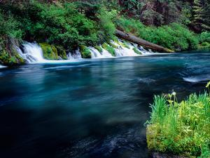 Metolius River near Camp Sherman, Deschutes National Forest, Jefferson County, Oregon, USA