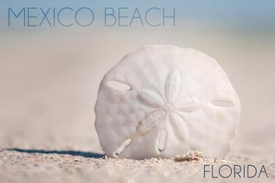 https://imgc.allpostersimages.com/img/posters/mexico-beach-florida-sand-dollar-and-beach_u-L-Q1GQPD50.jpg?p=0