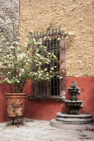 https://imgc.allpostersimages.com/img/posters/mexico-san-miguel-de-allende-courtyard-in-san-miguel-de-allende_u-L-Q1CZNHL0.jpg?p=0