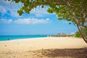 Beautiful Beach in Aruba, Caribbean Islands, Lesser Antilles by mffoto