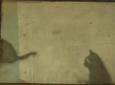 Blurred Cats Sitting by Mia Friedrich