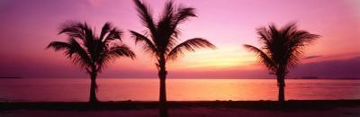 Miami Beach, Florida, USA