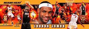 Miami Heat - LeBron James Panoramic Photo