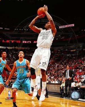 Miami Heat - Norris Cole Photo
