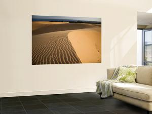 Sand Dunes by Micah Wright