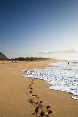 The Long Stretches of Beach, Polihale State Beach Park, Kauai, Hawaii by Micah Wright