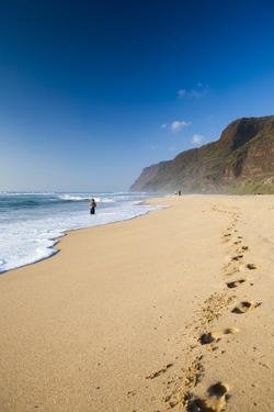 The Long Stretches of Beach, Polihale State Beach Park, Kauai, Hawaii by Micah Wright