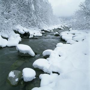 Snowy Riverbank by Micha Pawlitzki