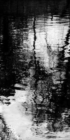 Reflecting Triptych II by Michael Barrett