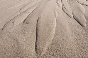 Dune Patterns by Michael Blanchette Photography