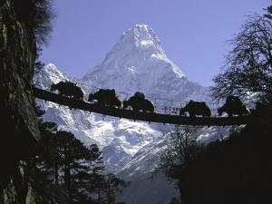 Bridge on Ama Dablam, Nepal by Michael Brown
