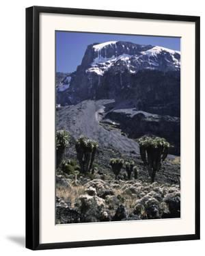 Desert Landscape with Mountain View, Kilimanjaro by Michael Brown