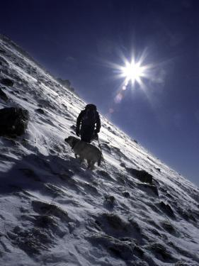 Man with Dog Climbing Arapahoe Peak in Strong Wind and Snow, Colorado by Michael Brown