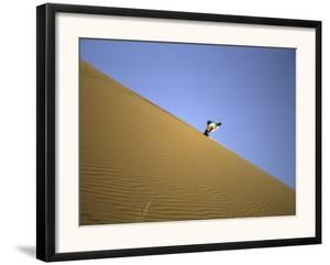 Snowboarding on Sanddunes, Morocco by Michael Brown