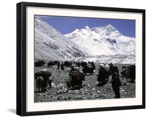 Yaks and Sherpas at the Foot of Himalayan Mountain Range by Michael Brown