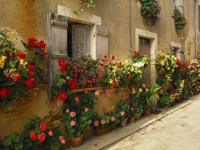 Exterior of a Rustic House Covered with Flowers, Landes, Aquitaine, France by Michael Busselle