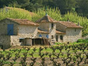 Exterior of a Stone Farmhouse in Vineyard Near Pierrefeu, Var, Provence, France, Europe by Michael Busselle
