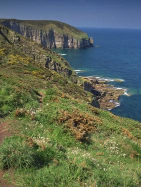 Landscape of Cliffs Along the Coastline at Cap Frehel, Cote D'Emeraude, in Brittany, France, Europe by Michael Busselle