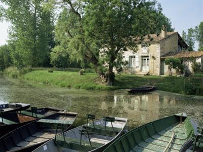 Marais Poitevin, Near Coulon, Western Loire, Poitou Charentes, France by Michael Busselle
