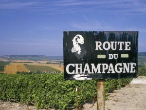 Route Du Champagne Sign, Near Epernay, Marne, Champagne Ardenne, France by Michael Busselle