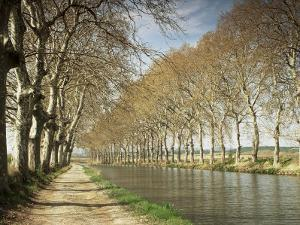 The Canal Du Midi, Near Capestang, Languedoc Roussillon, France by Michael Busselle