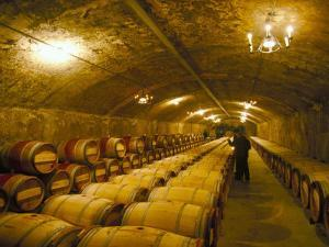The Cellars, Chateau Lafitte Rothschild, Pauillac, Gironde, France by Michael Busselle
