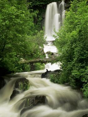 Waterfall Near Le Mont Dor, Auvergne, France by Michael Busselle