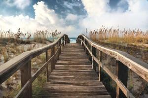 Path To Paradise by Michael Cahill