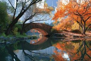 Gapstow Bridge, Fall by Michael Chen