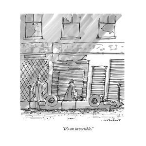 """It's an invertible."" - New Yorker Cartoon by Michael Crawford"
