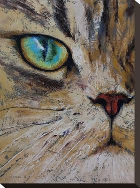 Persian Cat by Michael Creese