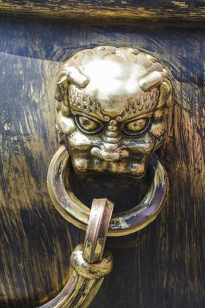 Decorated Iron Vats In, Forbidden City, Beijing China by Michael DeFreitas