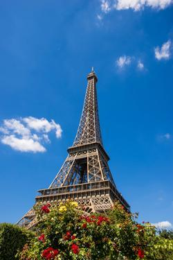 Eiffel Tower named after Gustave Eiffel, Paris, France. by Michael DeFreitas