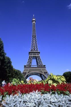 Eiffel Tower, Paris, France by Michael DeFreitas