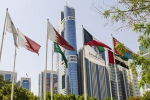 Flags in Park and Downtown Skyline of Dubai, United Arab Emirates by Michael DeFreitas