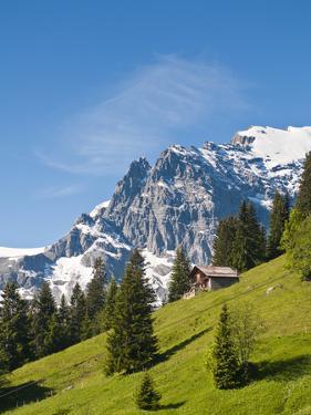 Jungfrau Massif and Swiss Chalet Near Murren, Jungfrau Region, Switzerland by Michael DeFreitas