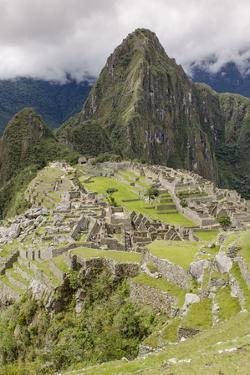 Machu Picchu, UNESCO World Heritage Site, Near Aguas Calientes, Peru, South America by Michael DeFreitas