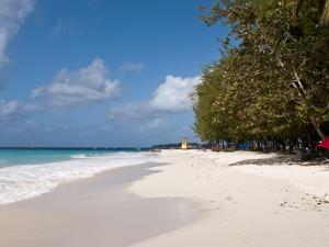 Miami Beach, Barbados, Windward Islands, West Indies, Caribbean, Central America by Michael DeFreitas