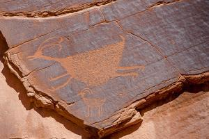 Petroglyphs at Sun's Eye, Monument Valley Navajo Tribal Park, Monument Valley, Utah by Michael DeFreitas