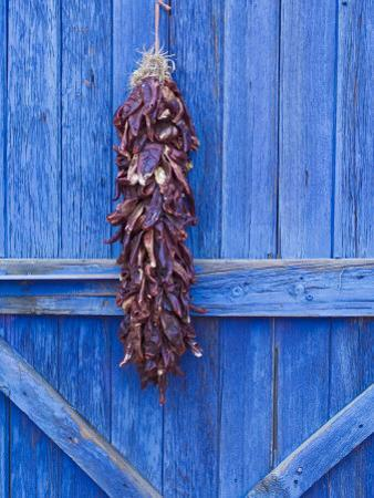Red Chilli Peppers on Barn Door, New Mexico, United States of America, North America by Michael DeFreitas