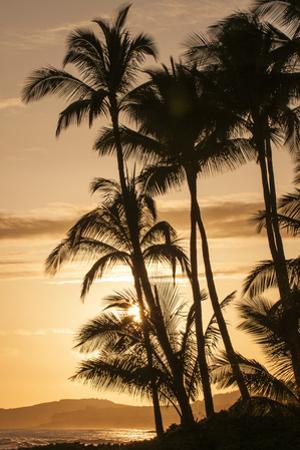 Sunset at Poipu Beach, Kauai, Hawaii by Michael DeFreitas