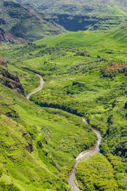 Waimea Canyon State Park, Kauai, Hawaii, United States of America, Pacific by Michael DeFreitas