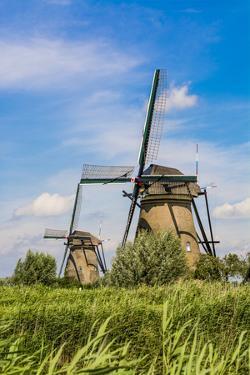 Windmill in Unesco World Heritage Site, Kinderdijk, Holland, Netherlands. by Michael DeFreitas