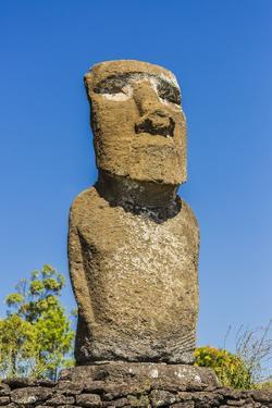 Detail of a Moai at Ahu Akivi by Michael
