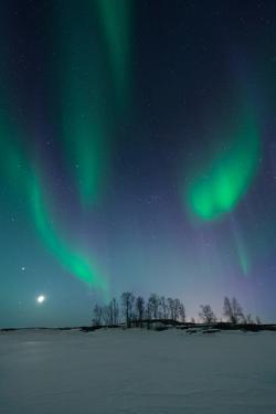Aurora over Small Island by Michael Ericsson