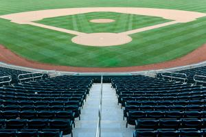 Baseball Stadium by Michael Flippo