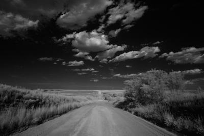 Black and White Landscape of a Rural Dirt Road by Michael Forsberg