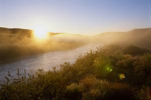 Sunrise Through Fog on the Loup River in the Nebraska Sandhills by Michael Forsberg